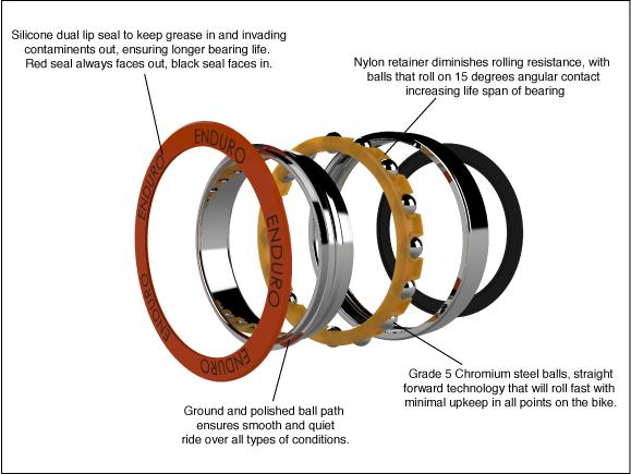 angular contact bearing anatomy